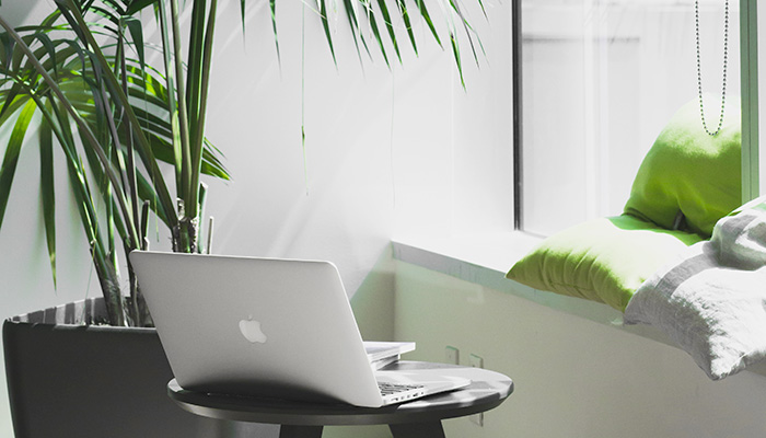 Laptop on small desk by window with plant and cushions