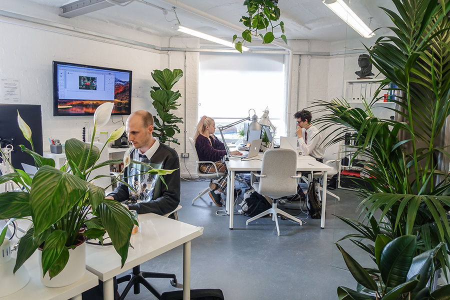 LabGenius x Hubble: How A Tech Startup Transformed Their